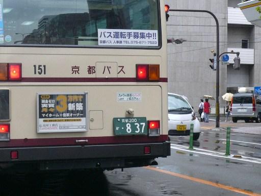 P1040798.JPG